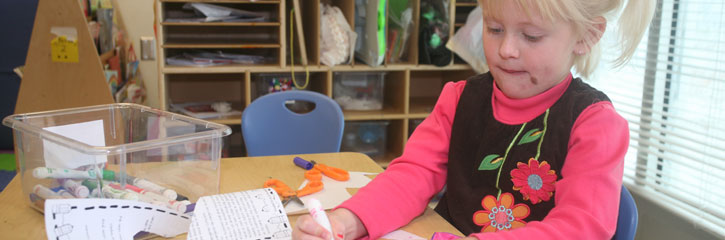 Professional Technical Infanttoddler Care Brunswick Community