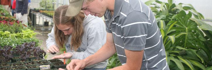 subheader-horticulture-technology